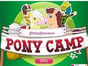 Пони шоу