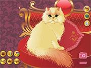 Роскошный персидский кот