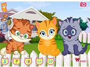 Маленькие котята на заборе
