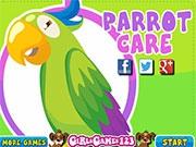 Твой любимый попугай