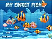 Покорим своих рыбок рыбок