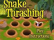 Норы для змеи