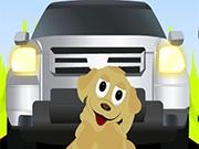 Собака на дороги
