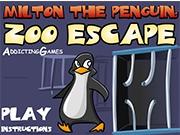 Необычная история пингвина
