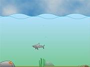 Опасные акулы