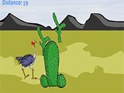 Упрямый страус