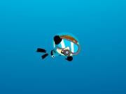 Морская чистка