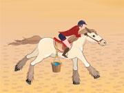 Скачка по пустыне Египта