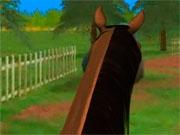 3D скачки на лошади