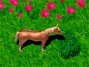 Лошадь собирает яблоки