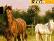 Пазл с лошадьми