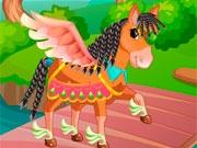 Салон красоты для лошадей
