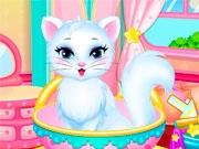 Кошечка в салоне красоты
