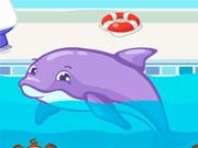 Безделье с дельфином