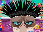 Сердитый кот в парикмахерской