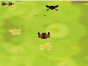 Войны в мире жуков
